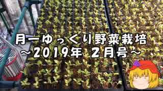 月一ゆっくり野菜栽培 2019年2月