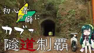 【東北ずん子車載】初心者の癖にカブで隧