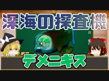 【 Drenchless Kimono 】 Probe of deep sea? Demenigis 【 Explanation slowly #4 】