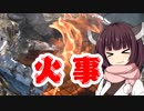 アウトドアで火事になりバラ肉の油のエネルギーに驚愕する動画