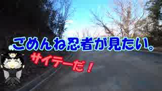 道を外れたバイクの苦悩 7