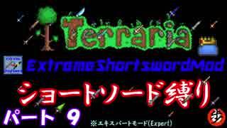 [Terraria+MOD] ショートソード縛りEX パート9 [ゆっくり実況]