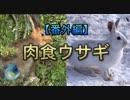 【番外編】変な生き物 part3