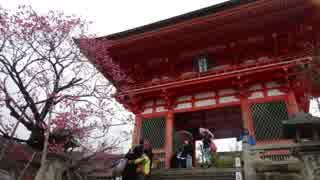 【ゆっくり】徒歩で日本一周part552【京都】