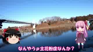 琴葉姉妹と行く釣行記録(釣り堀編part2)