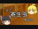 【ゆっくり解説】ゆっくり寄生虫解説#20~マダニ~
