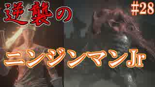 ダークソウル3・終わる世界 #28 ~ソウ
