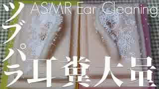 【ASMR】耳からあふれる発泡ビーズ型耳垢【音フェチ】