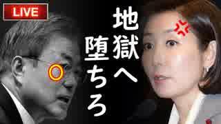 文大統領支持率45%で就任後最低、不支持率初の50%超え!日本の制裁を止めるラストチャンスを生かせるのか?それとも…他【カッパえんちょーGT】
