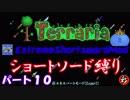 [Terraria+MOD] ショートソード縛りEX パート10 [ゆっくり実況]
