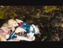 【リョナ】DOA6 マリーにロメロとボーアンドアロー(紺レオタード、コス破壊)