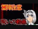 【怖い話】呪いの動画 霊障注意・・・最後までみたら・・・