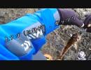 「寒空の磯で…」アナハ○?、ア○ナメも!? のうてんパイラーのDearAngler ~Stories~【第5話】