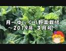 月一ゆっくり野菜栽培 2019年3月