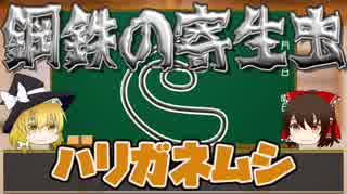 【へんないきもの】鋼鉄の寄生虫!ハリガネムシ【ゆっくり解説#10】