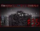 [ホラゲー実況]関西のおじさんが零~濡鴉の巫女~を初見プレイ#35