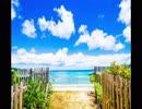 【癒し】穏やかな浜辺の波の音《10分》(睡眠用BGM・作業用BGM・ASMR)
