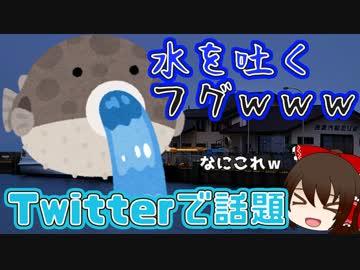 【Twitterで話題】水を吐くフグの仕組みってどうなってるの?【ゆっくり解説】