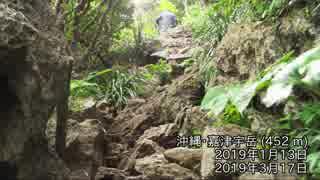 【RTA】沖縄嘉津宇岳攻略【失敗あり・自転