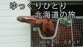 【ゆっくり】ひとり北海道の旅 Vol.6