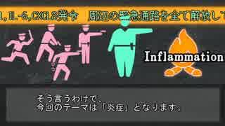【ゆっくり解説】炎症+α