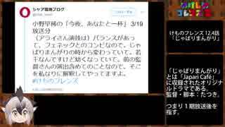【けもフレ2】アライさん違和感の謎【10話】