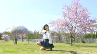 【チャイナ】ハルイチ。 踊ってみた【with桜】
