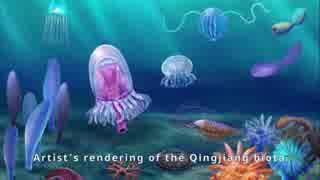 近江動物群ー新たなるカンブリアの怪物たち