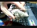 《刺繍》この動画の伸び次第では、本気の全力での《ボンドルド》の刺繍を考えています。カートリッジ付けてもいいかな。。