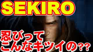【SEKIRO/隻狼】転生したらSEKIROだった ブラック忍び組織編