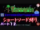 [Terraria+MOD] ショートソード縛りEX パート12 [ゆっくり実況]