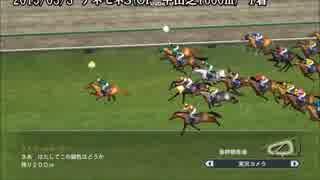 【WP8-2015】現役中に亡くなった馬と、その
