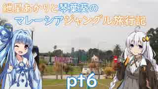 【ボイロ旅行記】紲星あかりと琴葉葵のマレーシアジャングル旅行記pt6【海外旅行】