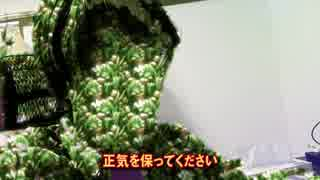 緑黄色野菜マン vol32