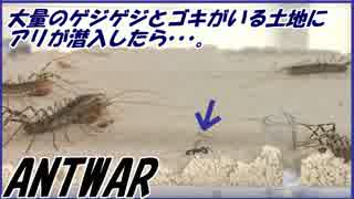 大量のゲジゲジとゴキブリがひしめく土地にアリが侵入した結果・・・。