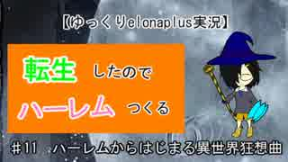 【ゆっくりelonaplus実況】転生したのでハーレム作る11