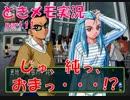 【ときメモ2 実況part.11】純の時代