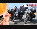 【KLX125】新弦巻マキと名所探訪 第27話「出水市ツル観察セン...