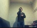 【黒光るG】ブースカ!ブースカ!!/林原めぐみ【歌ってみた】