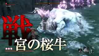 【隻狼 SEKIRO】源の宮『宮の桜牛』プレイ記録#17