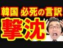 韓国政府で新たな国連制裁違反が発覚!見捨てたとバレた文在寅が必死の言い訳で恥を上塗り!韓国どうすんのこれ…海外の反応 最新 速報『KAZUMA Channel』