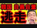韓国文在寅が支持率崩壊で自暴自棄!最悪の現実から目をそらしパニック状態!北の関係と韓国経済が恐怖の結末に…海外の反応 最新 速報『KAZUMA Channel』