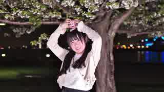 【ひじり】僕らの街に愛が降る夜だ 踊ってみた【葉桜の下で】