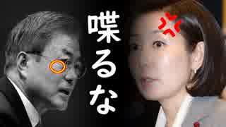「文在寅はトランプ大統領と喋るな!」韓国野党議員が無慈悲な文在寅批判を展開し一同失笑!【カッパえんちょーLi】
