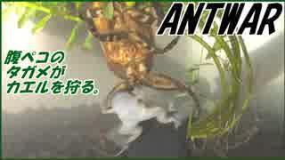 冬眠明けのタガメにカエルを与えたら狩りが衝撃すぎた・・・。