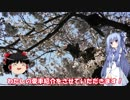 琴葉姉妹と行く釣行記録(車載編part4)
