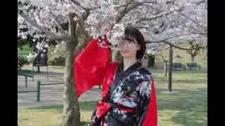 【桜】極楽浄土 踊ってみた【咲来 花】