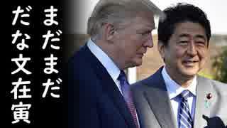 文在寅レッドカーペット持ち込み疑惑は本当か?安倍総理が米韓首脳会談を徹底解剖、トランプ大統領攻略のカギはコレだった!