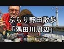 ぶらり野田散歩シリーズ「隅田公園周辺」