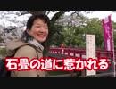 【のまさんち】 旧東海道 箱根越えウォーキング編